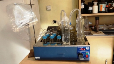 Batch type apparatus for BMP